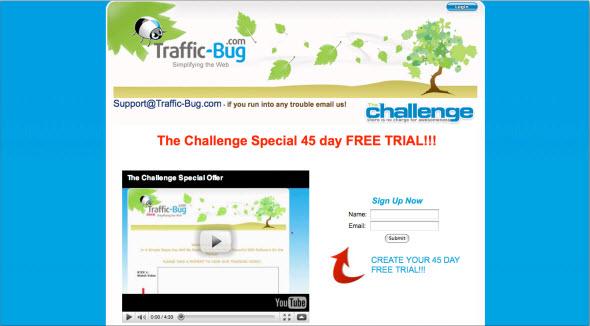 Traffic Bug